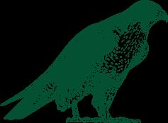 Ilustração de uma ave